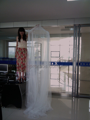 Health Guarded Promotional Gift Cornical Treated Mosquito Net