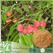 Anti Cancer Fontainea Picrosperma Natural 10:1 Blushwood Berry Extract Powder Price