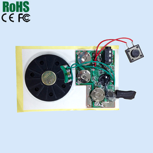 Customized recordable voice recognition chip with IC chip