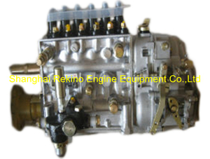 BP12S6 612601080580 Longbeng fuel injection pump for Weichai WD615