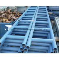 Safe Scaffold Steel Ladder Beam with Blue Painted (TPSLB001)