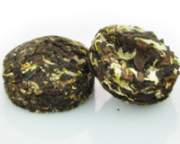 Chrysanthemum mini Puer Toucha