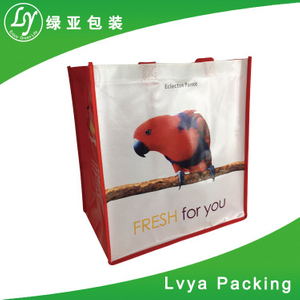 High quality promotion Dongguan Manufacturer Custom pp non woven laminated tote bag