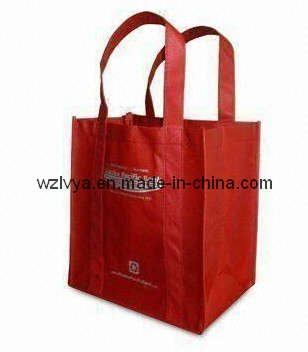 Nonwoven Bag with Silk Print (LYSP19)