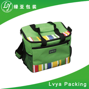 cooler bag/ high quality 600d cooler bag/ hot sale new style insulated promotion cooler bag