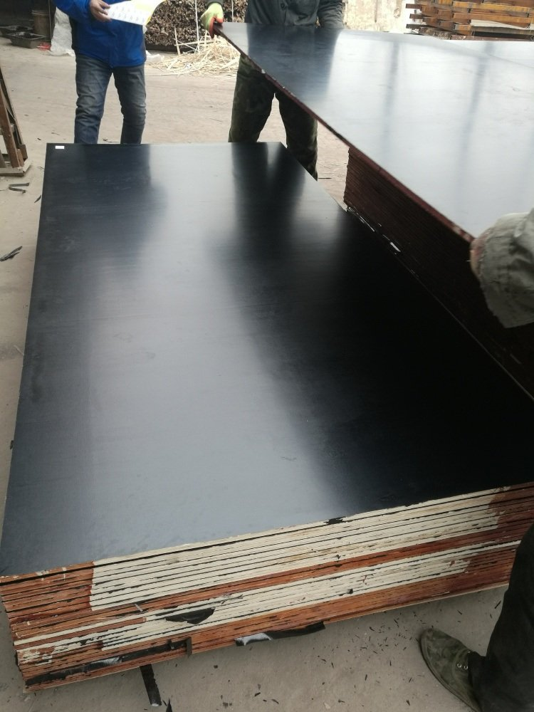 21mm Black Film Faced Plywood Poplar Core First Grade