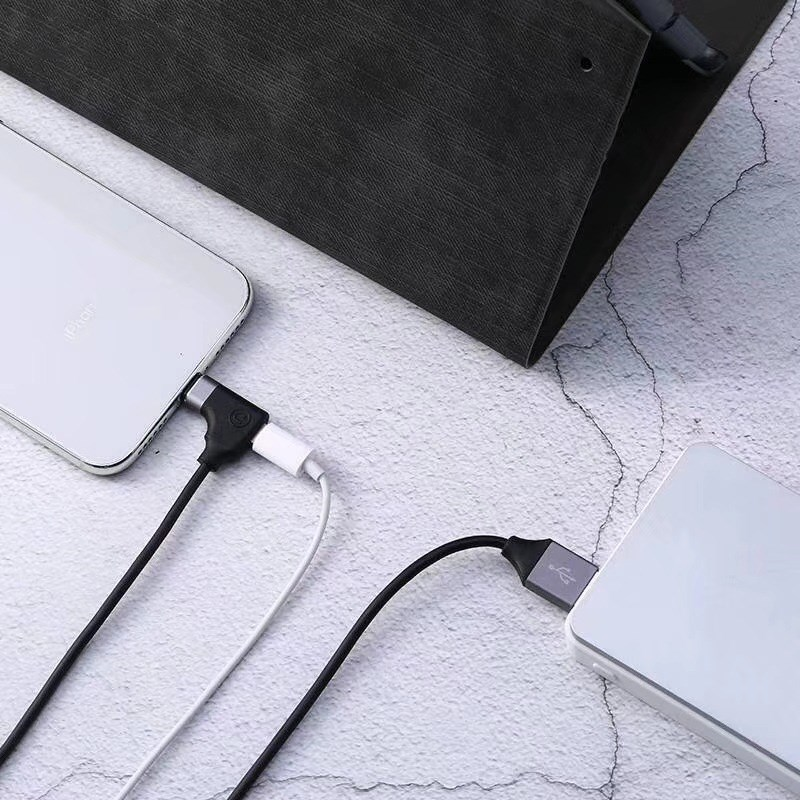 2 in 1 Mobile Phone Charging Cable Audio Adapter Cable for IPhone X Adapter Cable