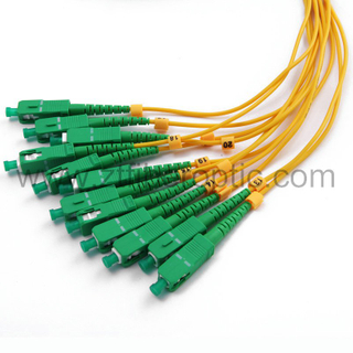 Multicore Sc/APC Optical Fiber Patch Cable