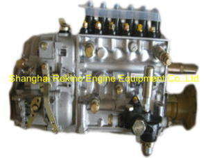 BP12S4 612601080579 Longbeng fuel injection pump for Weichai WD615