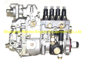 BP13B2 13034114 Longbeng fuel injection pump for Weichai WP4D66E200