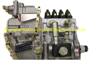 BP13J6 13054788 Longbeng fuel injection pump for Weichai WP4C102-15