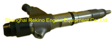0445120222 common rail fuel injector for Weichai WP10