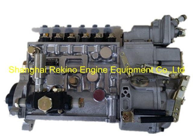 BP5248A 612600081179 Longbeng fuel injection pump for Weichai WD615