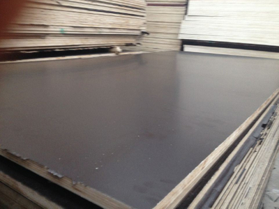 Birch Core Film Faced Plywood Made in China