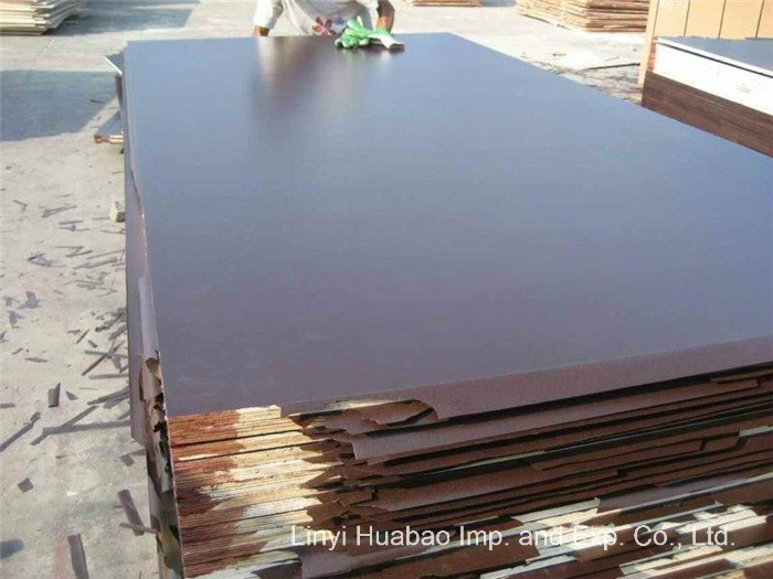 Film Faced Plywood to Doha Market