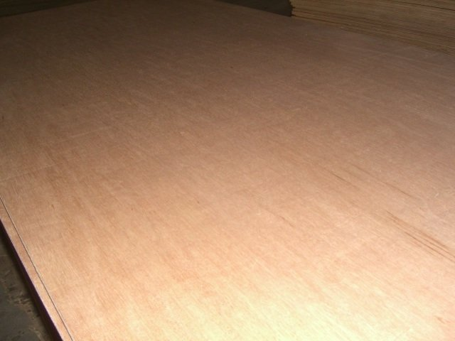 18mm Bintangor Plywood, Sanded Well