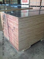 Poplar/ Birch/Hardwood Core Construction Plywood and Formwork Plywood (HB208)
