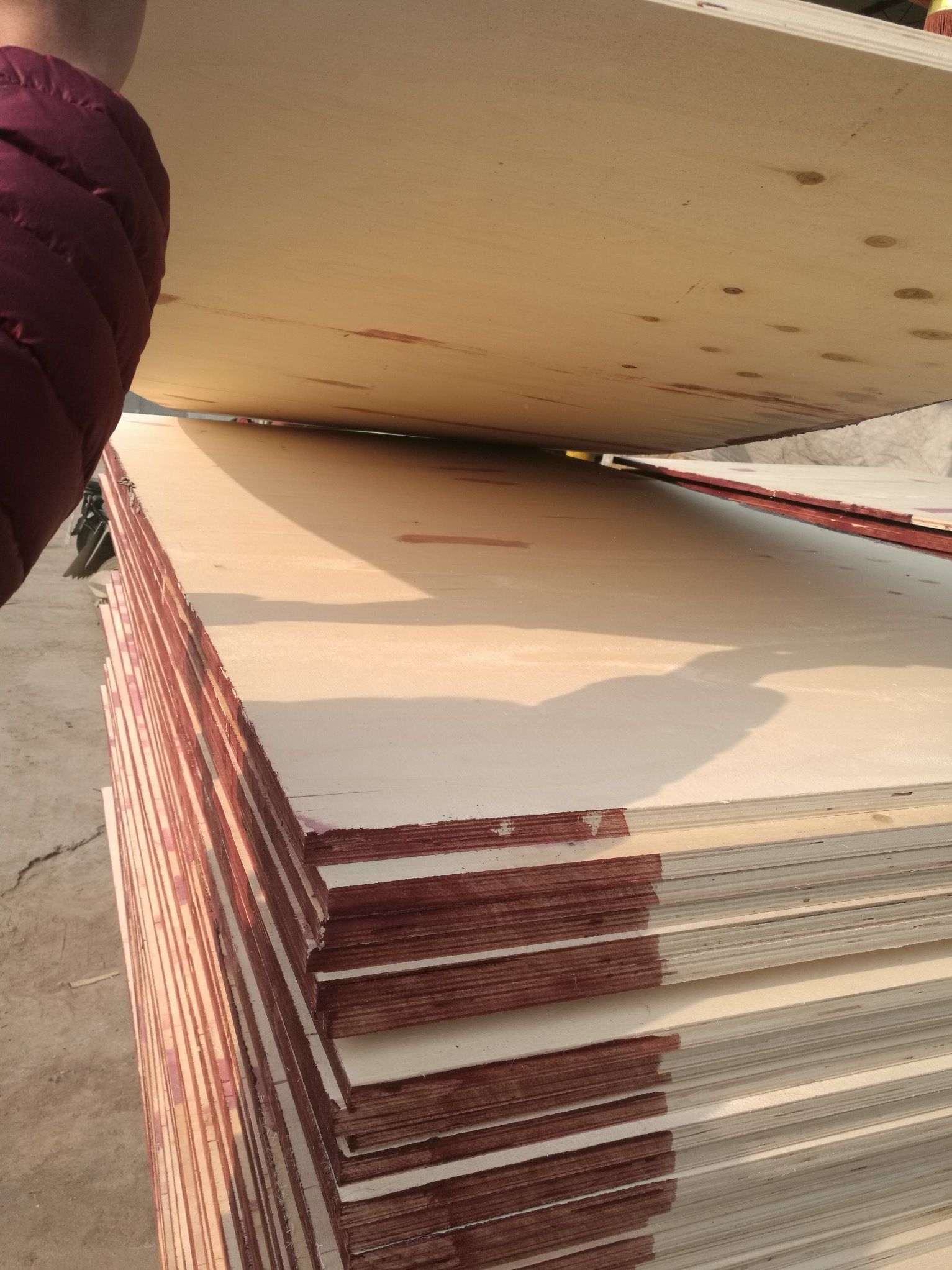 18mm Constructions Film Faced Plywood Hardwood Core