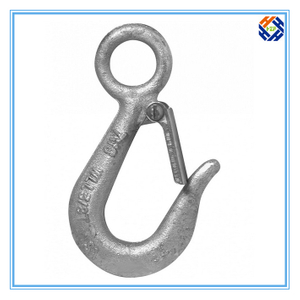 Alloy Steel Snap Hook with Latch