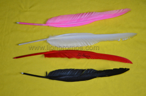 Creative Promotional Gif True Goose Feather Quill Pen