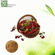 Natural Haw Apple Extract 5% 10% Flavonoids Hawthorn Extract