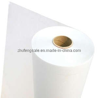 Polyester Film (6630(6630A))