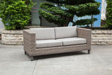 Modern Wicker/Rattan Sofa for Outdoor Furniture (LN-2002)