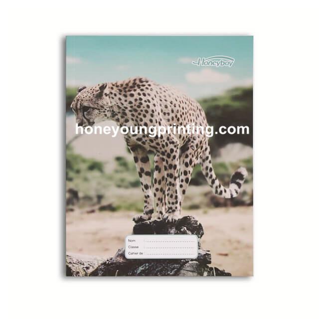 seyes notebook (5).jpg