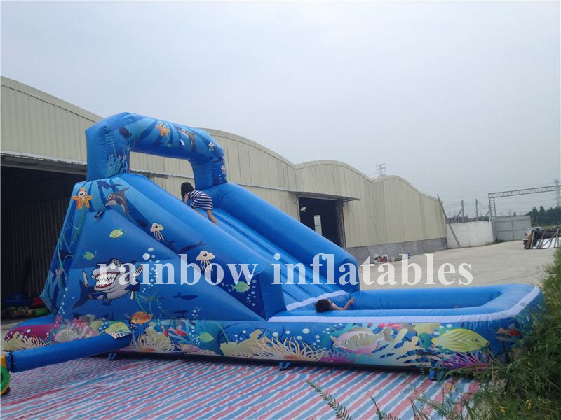 RB7009 (8.2x2.4x3.7m) Inflatable Water Slide With Pool For Outdoor Playground, Inflatable Sea World Animals Water Sldie