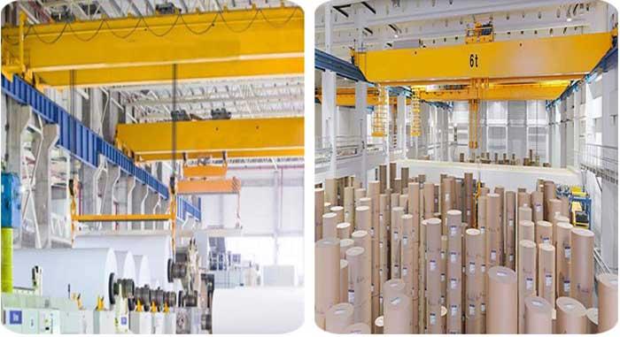 Bridge Crane For Paper Industry