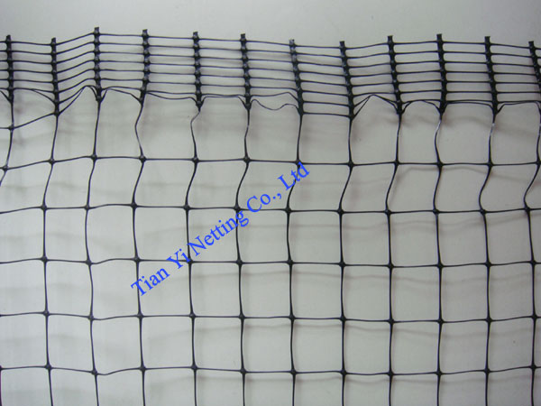 strength net