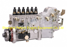 BP5563 A8N00-1111100-C27 Longbeng Yuchai fuel injection pump