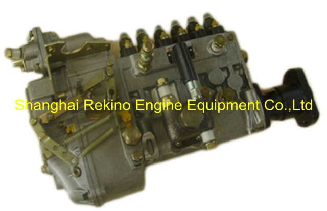BP4238 612600081053 Longbeng fuel injection pump for Weichai WD615.61 Bulldozer