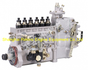 BP2251A T8100-1111100A-C27 Longbeng fuel injection pump for Yuchai YC6T