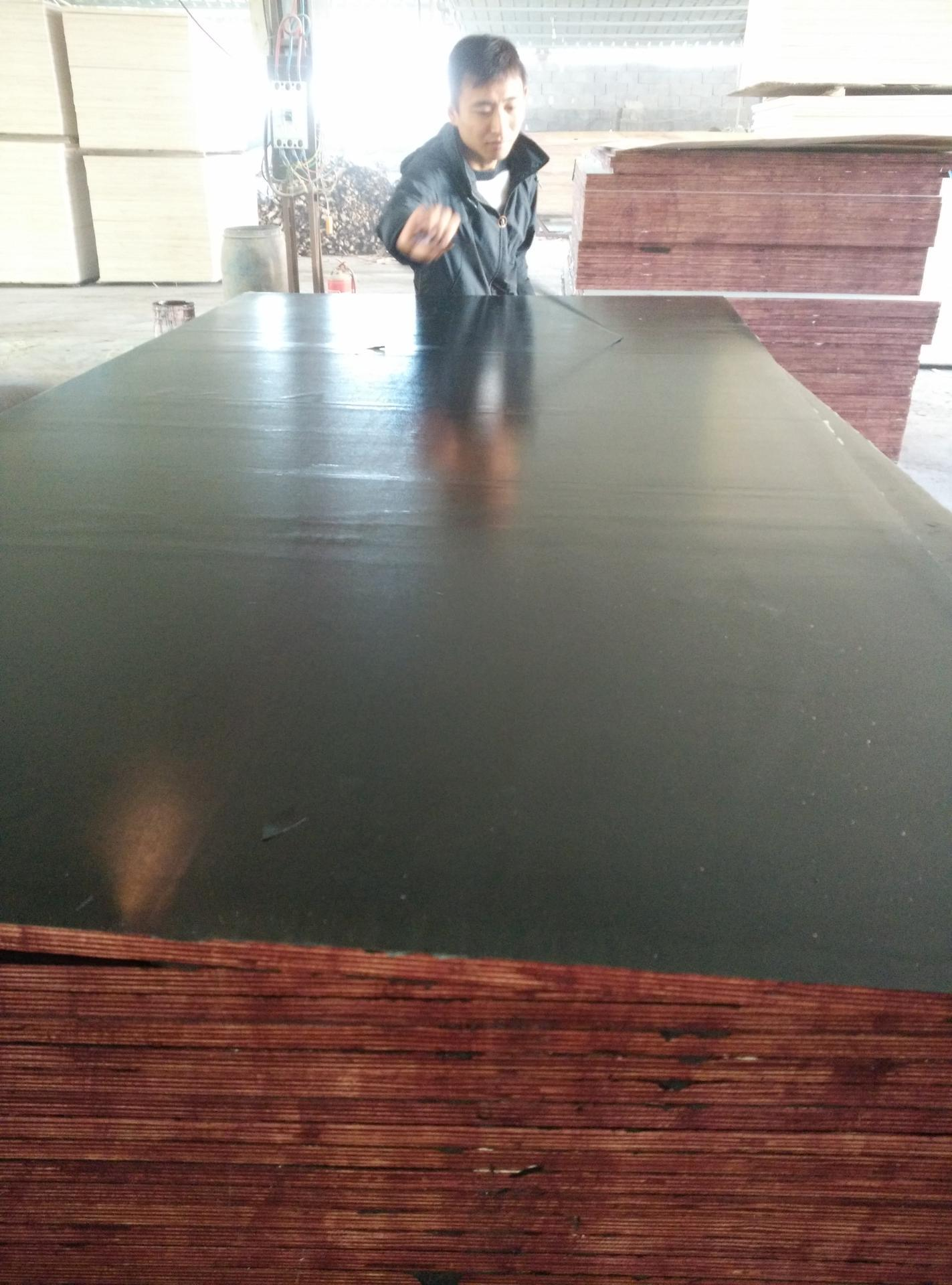 Chinese Film Faced Plywood for Concrete Formwork