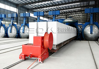 AAC Panel Production Line