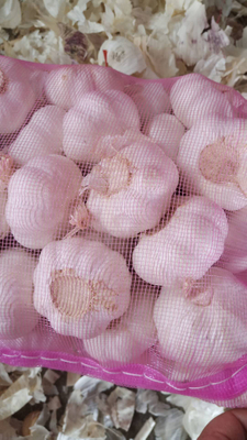 2020 China Fresh Pure White Garlic Export Garlic Bulb Price