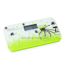 Bank Telecome Mobile Fashional Mini Portable Digital Health Scale