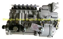 BP5A92 612600081253 Longbeng fuel injection pump for Weichai WD615