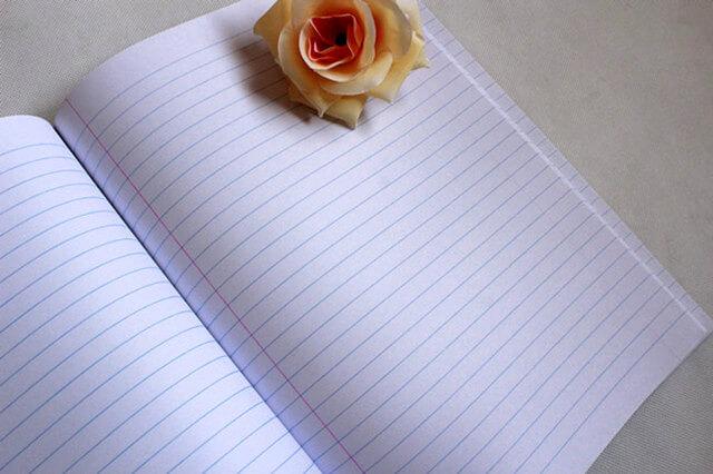 manuscript book (6)