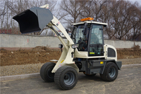 2017 New design mini loader manufactured in China