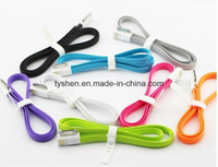 Portable Magnet Charge Cable for iPhone 4
