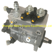 0445020273 610800080979 0445020078 0445020065 BOSCH common rail fuel injection pump for Weichai