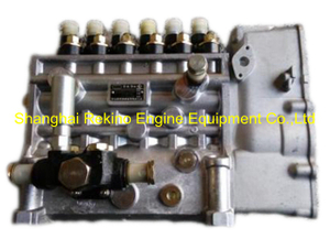 BP6137 BHT6P9150L6115 Longbeng fuel injection pump for Zichai Z6170ZLCZ-19