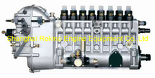 BP6821A 8170Z.31.00 Longbeng fuel injection pump for Weichai 8170ZCA