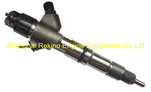 0445120459 13074417 common rail fuel injector for Weichai WP6