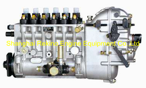 BP6664 616067350001 Longbeng fuel injection pump for Weichai 6160