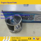 Brand New Piston 13020377 4110000054081 for Deutz 226b Engine