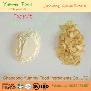 2018 Dehydrated Jingxiang High Flavor Pure Garlic Powder