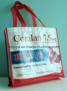 Recycled Repet Shopping Bags (LYR01)